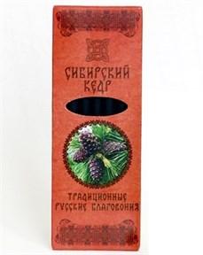 Сибирский кедр (ТРБ) - фото 9062
